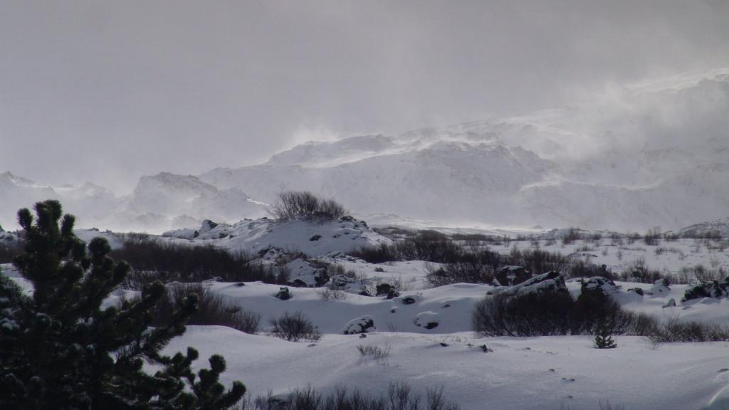 , Copyright © Ruslendingur,  Iceland, Helgafell, Heidmork;