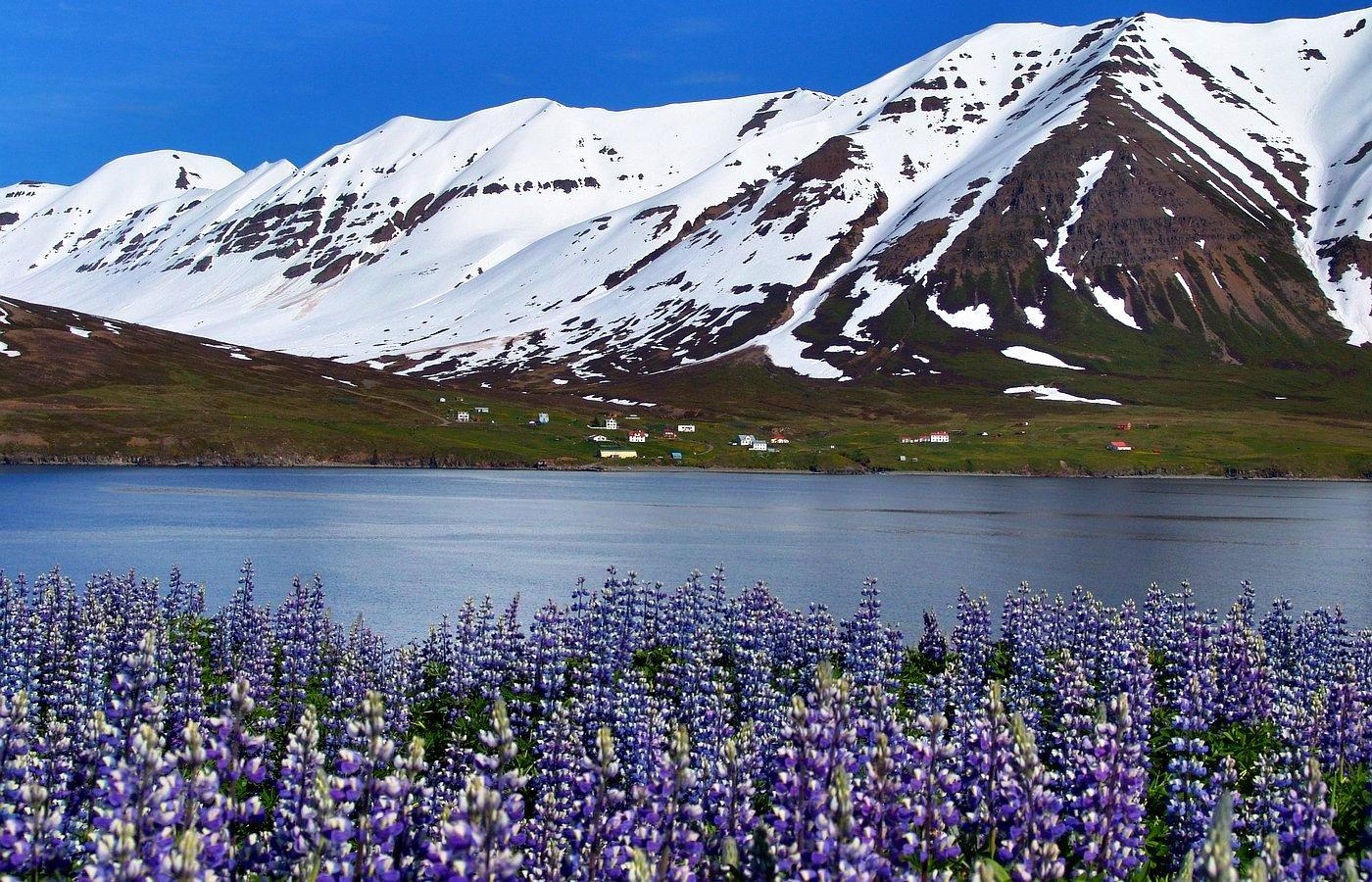 Исландия однодневная экскурсия из Рейкьявика